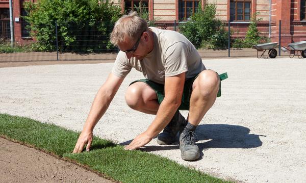 Gartenbau breuer Leistungen: Pflanzungen und Rollrasen