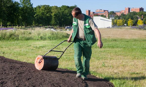 Gartenbau breuer Leistungen: Pflanzungen