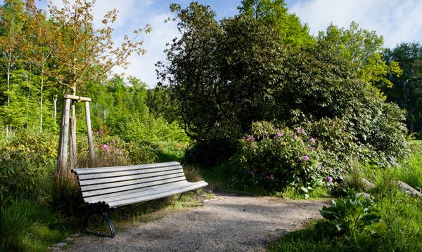 Gartenbau breuer Leistungen: Beratung