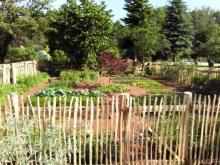 Fertig - der Bauerngarten im Juni