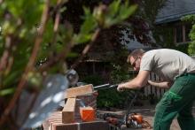 Gartenarbeiten in Schwerin - Schelfstadt