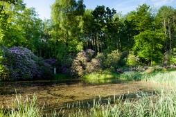 Schlosspark Willigrad: Neugestaltung einer Teichanlage